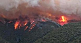 حرائق غابات استراليا تؤثر بشدة في مستوى ثاني أوكسيد الكربون في الجو