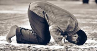أنواع السجود في الإسلام