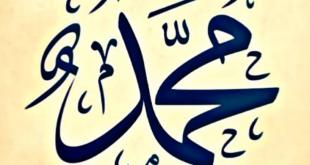 محمد صلى الله عليه وسلم رمز التواضع