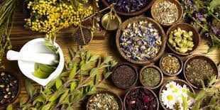 أفضل أنواع الأعشاب الطبية وفوائدها لعلاج الأمراض