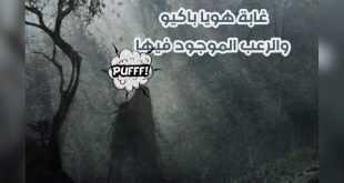 غابة هويا باكيو والرعب الموجود فيها