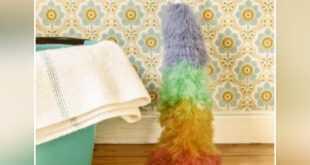 كيفية تنظيف ورق الجدران من الغراء