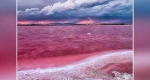 البحيرة الدموية ( البحيرة الوردية )