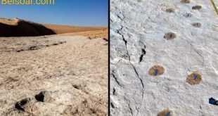 اكتشاف آثار في السعودية تعود لأكثر من 100 الف عام